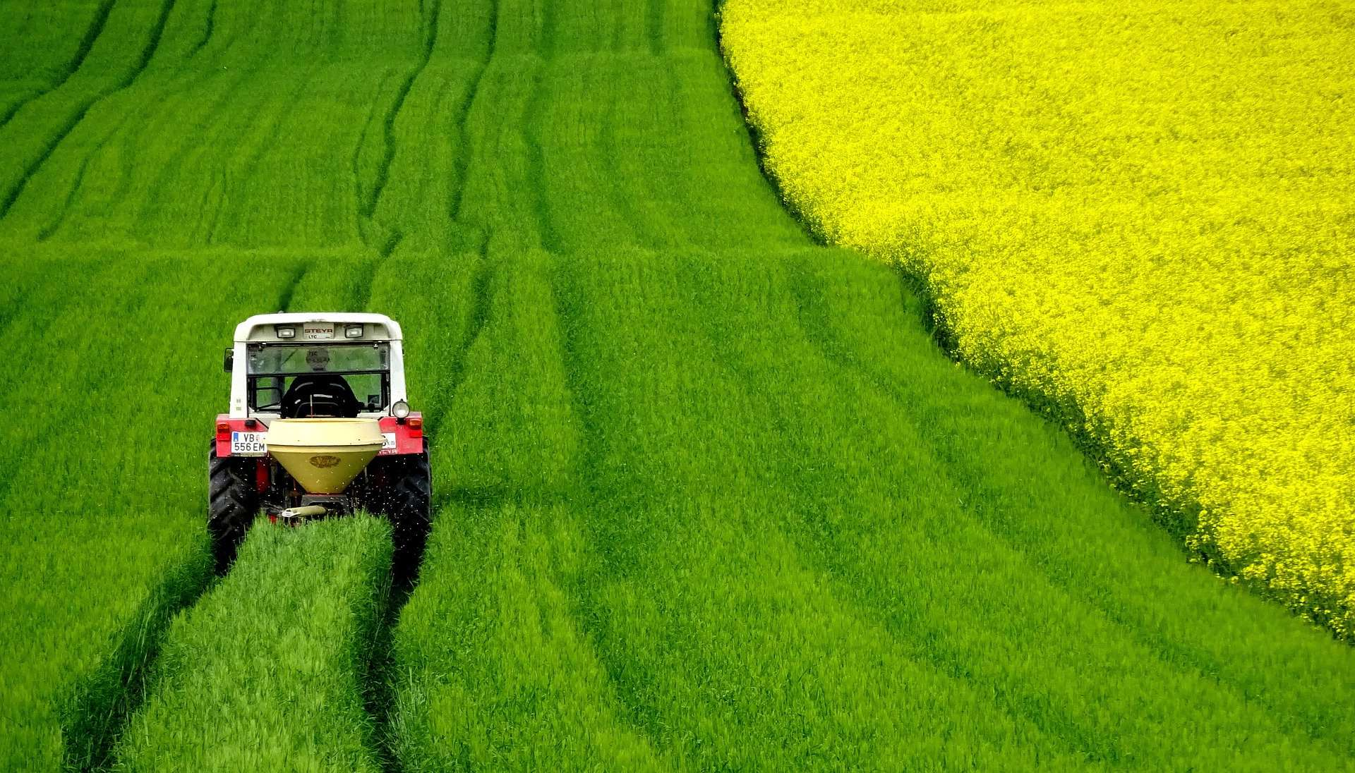 ciągnik na polu rolnym